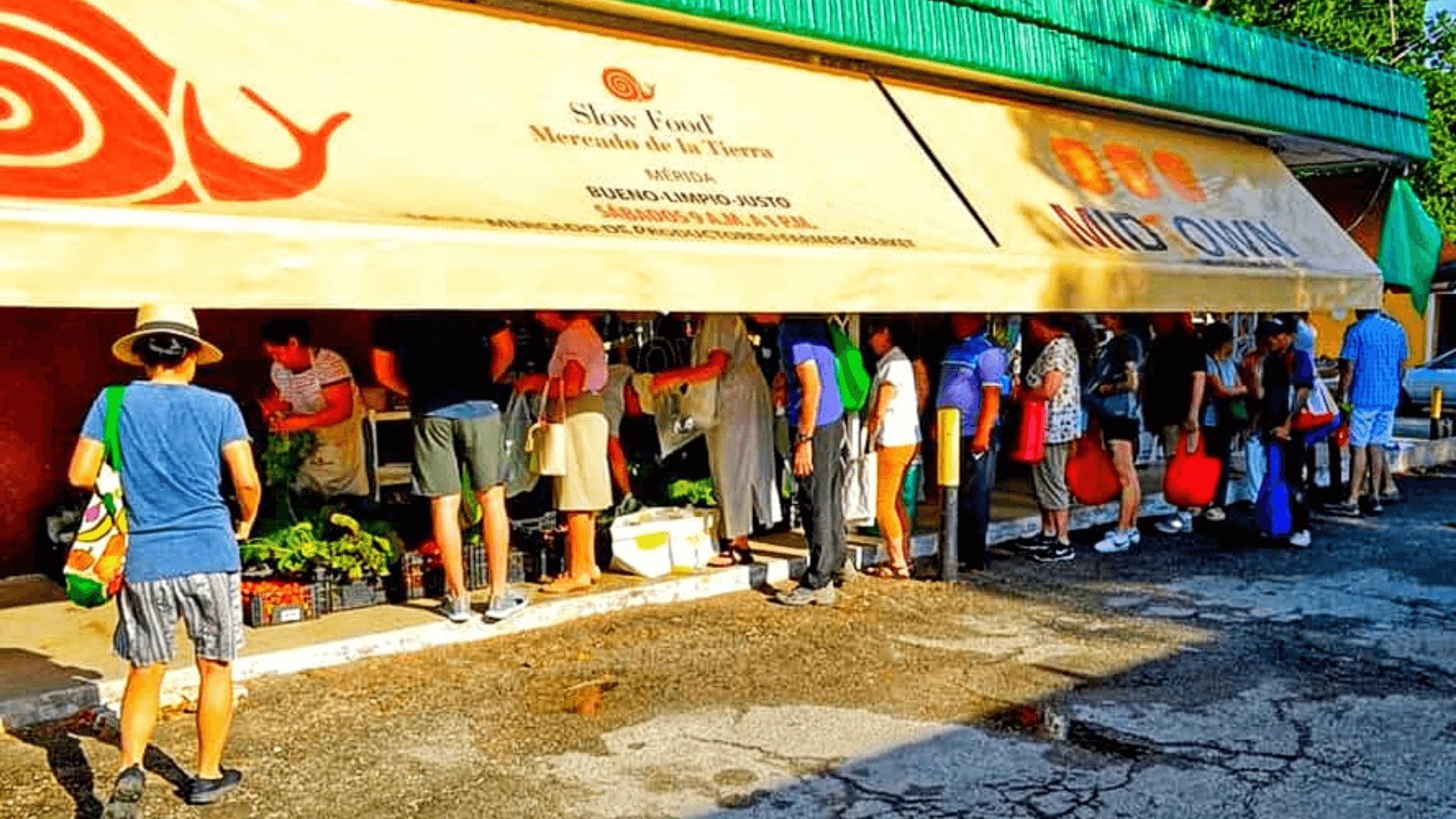 slow food market in merida mexico