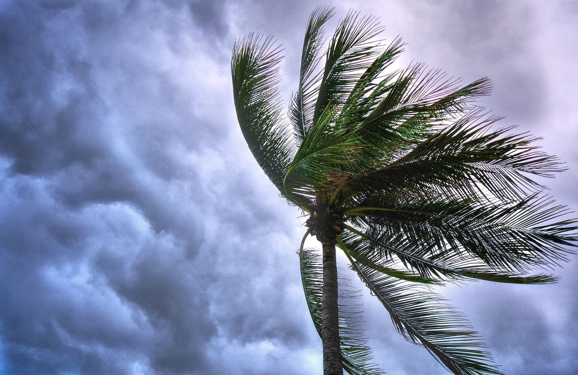 When is hurricane season in Mérida Mexico?