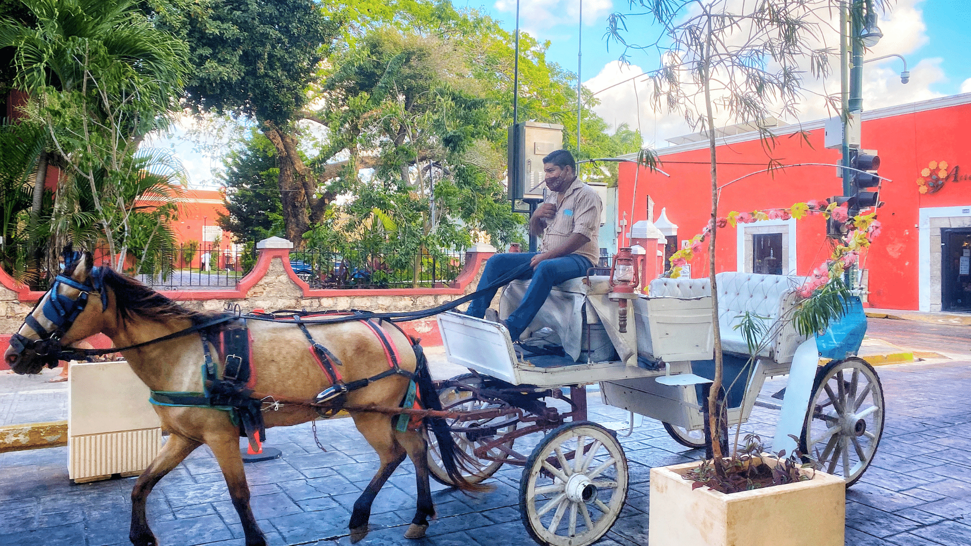 15 Mistakes I Made After Moving to Mérida