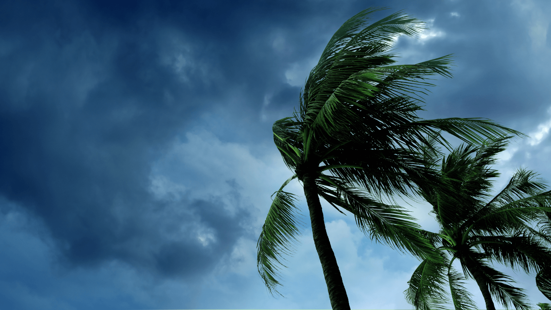 26 Essential Items for a Hurricane Safety Box